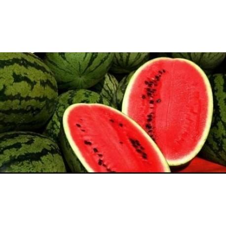 Sandía Krinson con semilla / Watermelon with Seed / Арбуз Кримсон с косточкой (Av)