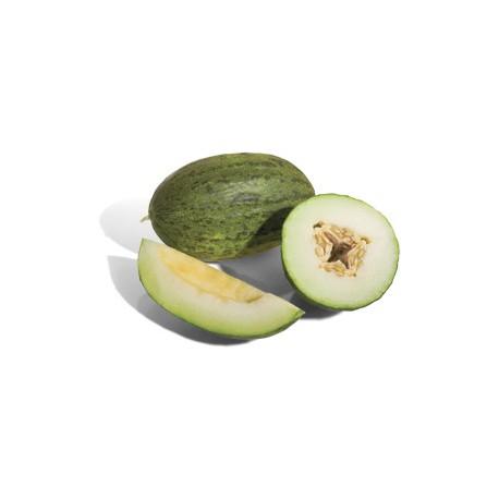 Melón piel de sapo / Santa Claus melon / Дыня зеленая (Av)